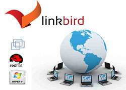 Virtualización Linkbird